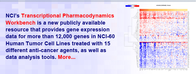 NCI's Transcriptional Pharmacodynamics Workbench is a new publicly available resource that provides gene expression data for more than 12,000 genes in NCI-60 Human Tumor Cell Lines treated with 15 different anti-cancer agents, as well as data analysis tools.