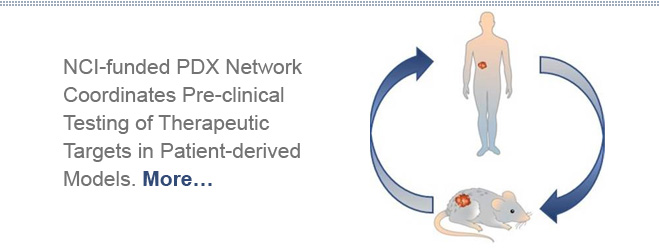 NCI-funded PDX Network Coordinates Pre-clinical Testing of Therapeutic Targets in Patient-derived Models.  More…